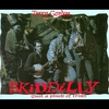 Cover of the album Skiddilly - Single