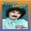 Couverture de l'album Sahte Sevgililer