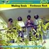 Couverture de l'album Firehouse Rock