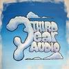 Cover of the album Third Ear Audio