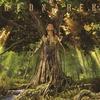 Cover of the album Oddycham…