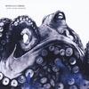Couverture de l'album Every Ocean Reversed