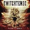 Couverture de l'album Flesh & Bones