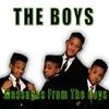 Couverture de l'album Messages From The Boys