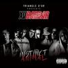 Cover of the album Instinct Animal