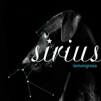 Cover of the track Sirius
