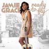Couverture de l'album Ready to Fly
