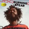 Couverture de l'album Ultimate Collection: Burning Spear