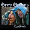 Couverture de l'album Grey Oceans