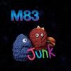 Cover of the album Junk