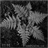 Couverture de l'album Confluencias I: Selva