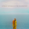 Couverture de l'album Andrew McMahon In The Wilderness