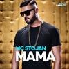 Couverture de l'album Mama - Single