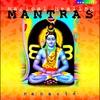 Couverture de l'album Magical Healing Mantras
