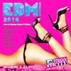Cover of the album EDM Megamix 2016