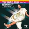 Couverture de l'album The Soul of Disco Vol.2 compiled by Joey Negro & Sean P