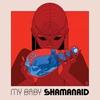 Couverture de l'album Shamanaid