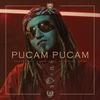 Couverture de l'album Pucam Pucam - Single