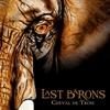 Cover of the album Cheval de Troie