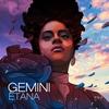 Couverture de l'album Gemini