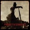 Cover of the album Primitive Race