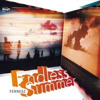Couverture du titre Endless Summer