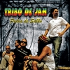 Cover of the album Pedra de Salão