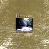 Couverture de l'album The Hollow