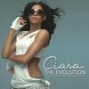 Couverture de l'album The Evolution