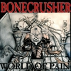 Cover of the album World of Pain