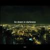 Couverture de l'album Lie Down in Darkness