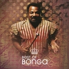 Couverture de l'album Best of Bonga