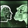 Couverture de l'album We Are Animals - EP