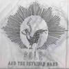 Couverture de l'album Sole & The Skyrider Band: Remix Album