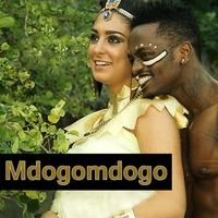 Cover of the track Mdogomdogo - Single