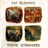 Cover of the album Terre etrangère