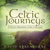 Cover of the album Celtic Journeys: A David Arkenstone Celtic Collection