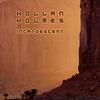 Couverture de l'album Incandescent