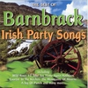 Cover of the album The Best Of Irish Party Songs