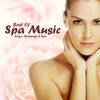 Couverture de l'album Best Of Spa Music