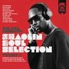 Couverture de l'album The RZA Presents Shaolin Soul Selection: Vol. 1