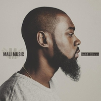 Cover of the track Mali Is...