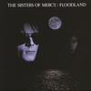 Couverture de l'album Floodland (Deluxe Version)