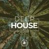 Couverture de l'album Deep House 2019