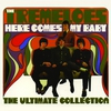 Couverture de l'album Here Comes My Baby: The Ultimate Collection