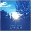 Cover of the album Soft Light - EP