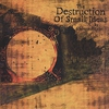Cover of the album The Destruction of Small Ideas