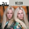 Couverture de l'album 20th Century Masters: The Millennium Collection: The Best of Nelson