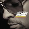 Couverture de l'album The Best of Shaggy