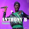 Cover of the album Anthony B : Playlist